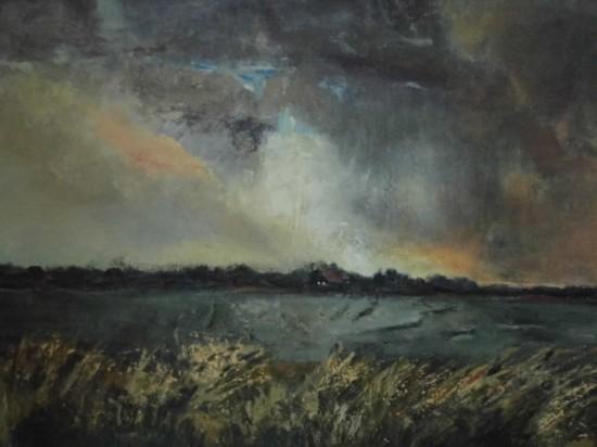 landschap bij Oostermeer